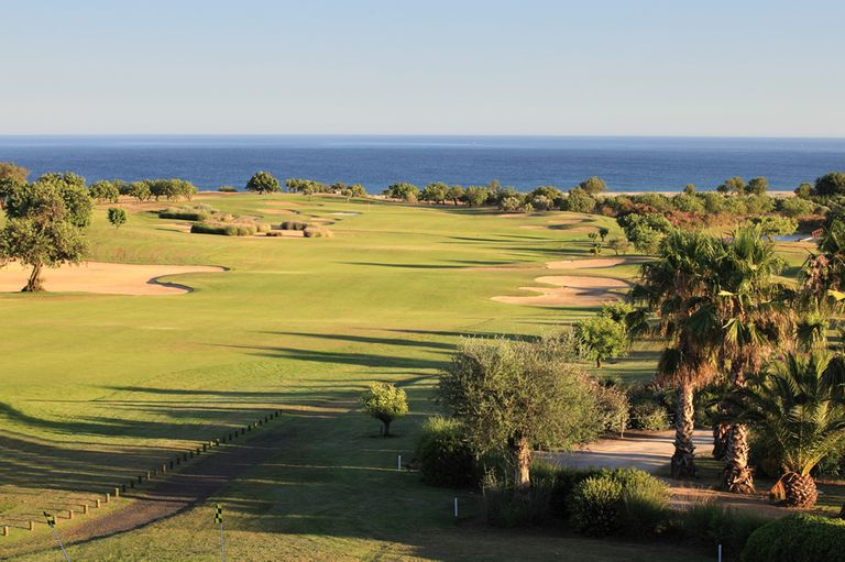 Madeira Golfe by Tom Chapman