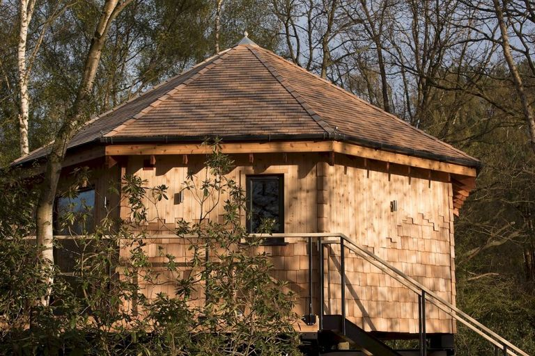 Tree-Top-Hideaway-Lincolnshire