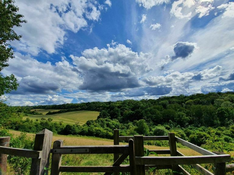 Farthing-Downs-and-Happy-Valley-Loop-via-AllTrails
