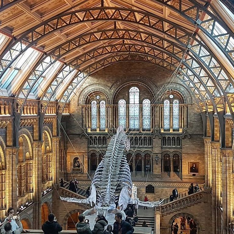 National History Museum in London